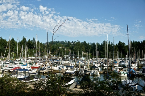 Driving along the old Marine Drive around the West Vancouver Yacht Club.