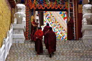 These monks were headed towards one of the temples to pray.