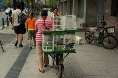 portable store