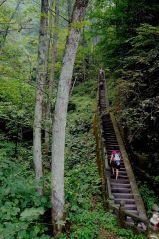 Wudangshan Stairs