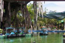 Dai Nam Bumper Boats