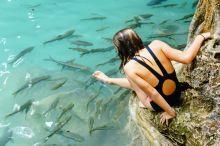 Nibbling fish!