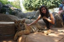 My Mum and a tiger