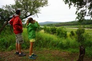 Michael and Emma trying to spot the animals.