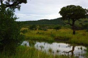 The landscape and vistas of Hluhluwe/iMfolozi are breathtaking.
