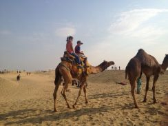 Camel ride on the dunes