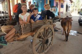 The Ox cart ride
