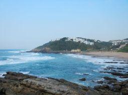 the dolphin coast