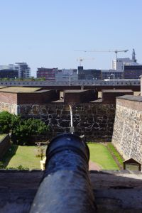 cannon with view