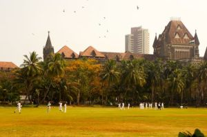 Downtown cricket
