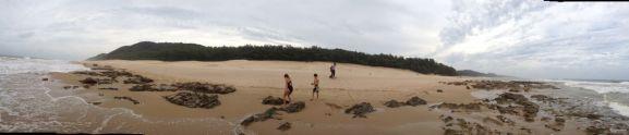 Beachcombing...