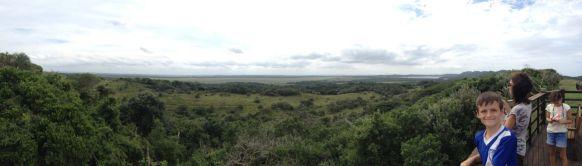 Wetland panorama...